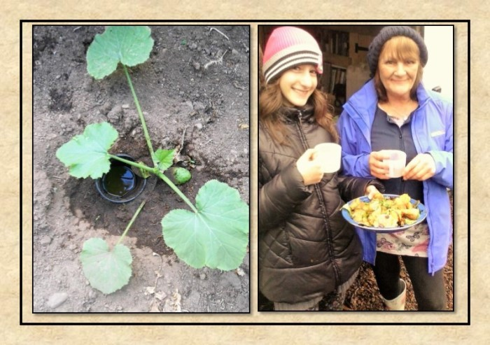 Guide to Vegetable Growing around Coupar Angus-11