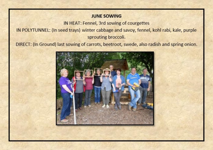 Guide to Vegetable Growing around Coupar Angus-19