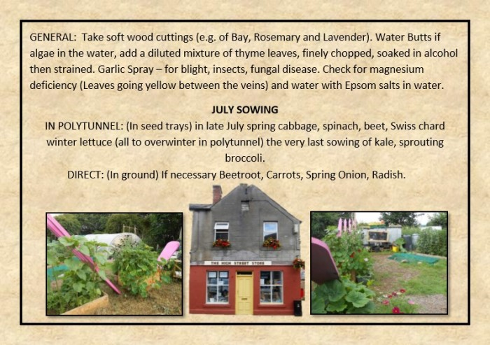 Guide to Vegetable Growing around Coupar Angus-21