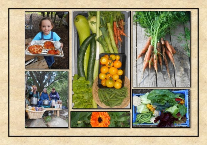 Guide to Vegetable Growing around Coupar Angus-22
