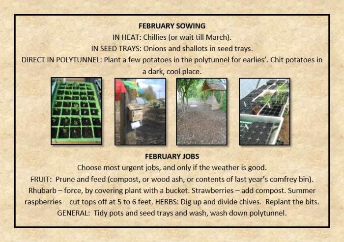 Guide to Vegetable Growing around Coupar Angus-5